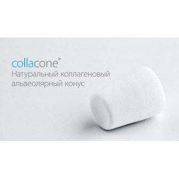 Collacone (12шт) 511112 Натуральный коллагеновый альвеолярный конус 16х11х7мм Botiss Biomaterials